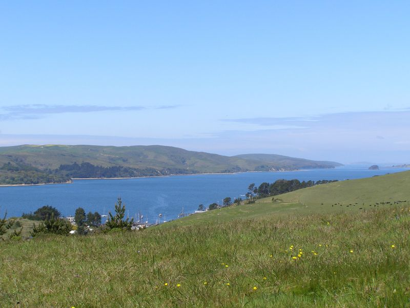 Tomales_Bay_Green_Hills_Gorgeous