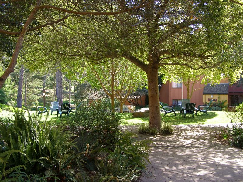 Pretty.Grounds.Lodging.Chairs